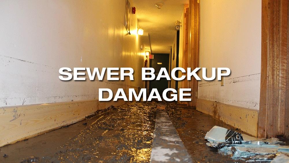 NH_sewer_backup (2)