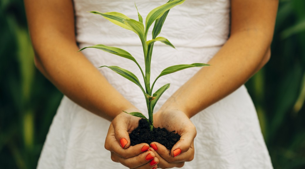 Woman holding plant.